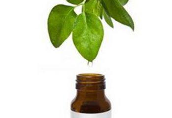 Çay Ağacı Yağı'nın Bilinmeyen Faydaları !
