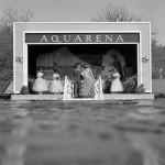 9 Islak Kareyle 1954 Yılında Su Altında Evlenen Çılgın Çiftin Hikayesi