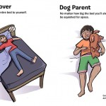 7 Most Amazing Differences Between Dog Lovers And Dog Parents