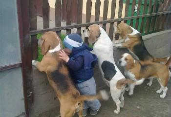 Her Çocuğun Bir Evcil Hayvanla Birlikte Büyümesi Gerektiğinin 20 Kanıtı