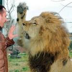 Hayvanların Sergilendiği Yerlere Gitmemeniz İçin 13 Vicdanlı Neden