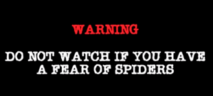 Man Attempts To Capture A Spider, What Happens Next Is…